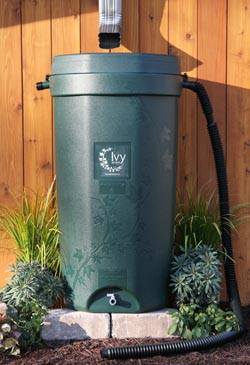 rain barrel 50-gallon-250