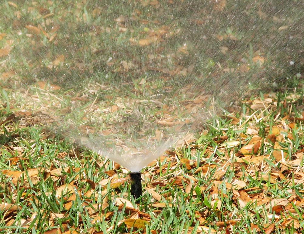 water spray-1000